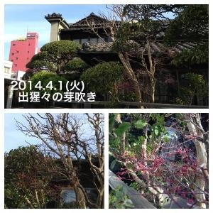 20140620-201613.jpg